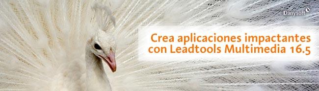 leadtools multimedia 16,5 y Leadtools DVR