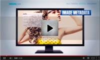 Leadtoools, video introducción