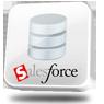 Salesforce Data Provider