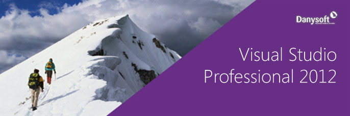 microsoft visual studio 2012 Profesional