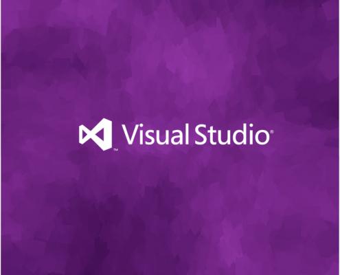 microsoft-visual-studio-201[1]