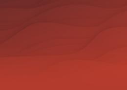 banner pagina de producto nta