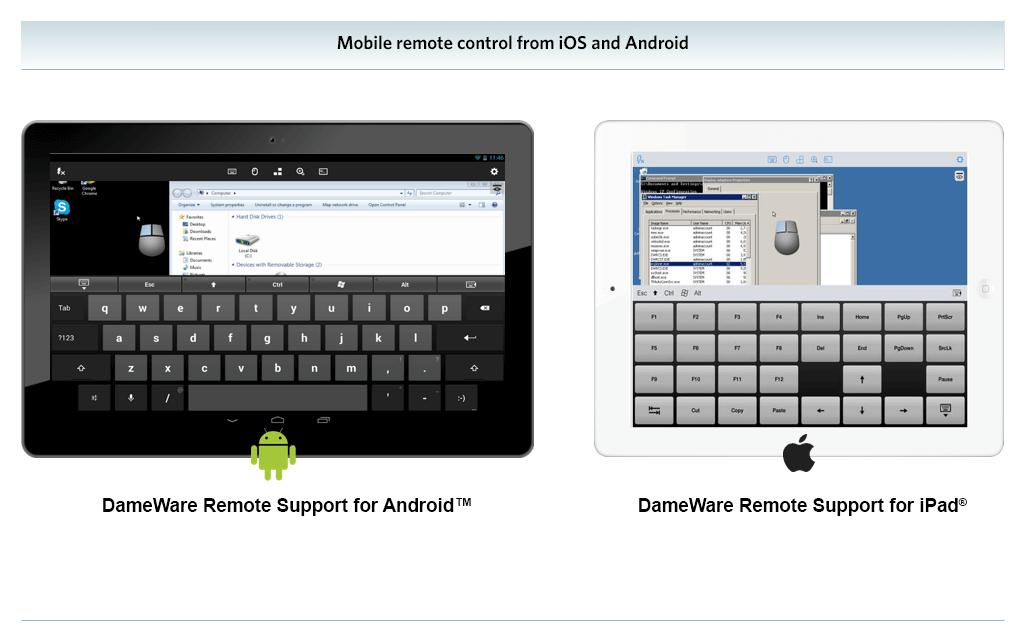grafico Dameware Remote Support v4