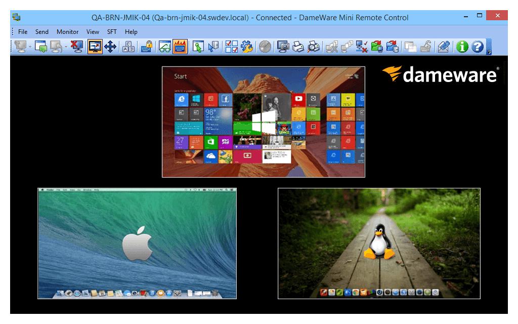 grafico Dameware Remote Support v8